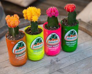 Upcycling lege flessen naar een bloempot