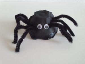Spin gemaakt van een eierdoos